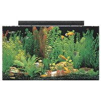 Buy SeaClear Rectangular Aquarium Combo (50 gallon)