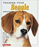 img - for Training Your Beagle by Kristine Kraeuter book / textbook / text book