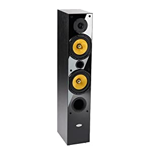 Crystal Acoustics TX-T1-BLA 2-way Hi-Fi speaker front tower Stereo speaker for Music and Movies (1 tower speaker, not pair) -Black gloss & Black Ash