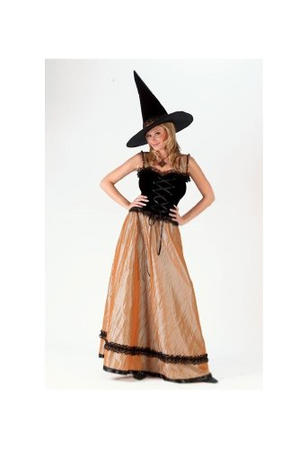 Golden Elegant Witch Costume - Adult Costume
