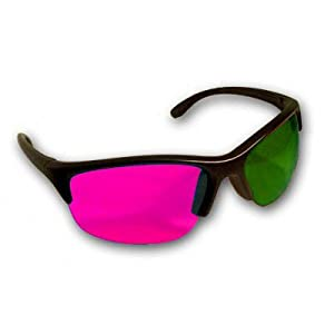 ProX Style 3D Glasses - Magenta / Green Plastic 3D Glasses The Ultimate Way to Watch Ice Age 3 Dawn of The Dinosaurs 3D and Other New 3d Movies At Home (1Pair)