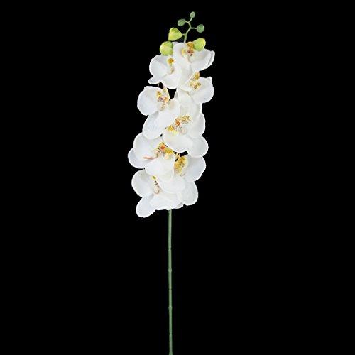 flor-planta-de-orquidea-artificial-mariposa-simulacion-ramo-de-novia-posy-decor-hogar-boda