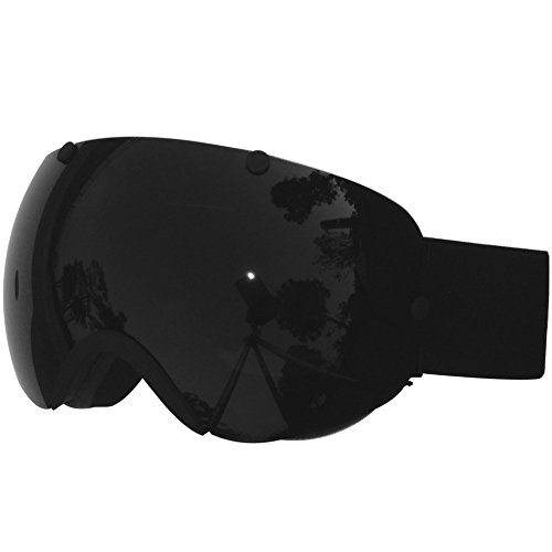 ZIONOR Professional Lagopus Snowmobile Snowboard Skate Ski Goggles with Detachable Lens and Super Wide Angle Double Lens Anti-fog Big Spherical Unisex Adult Multicolor Lagopus2300 (All Black)