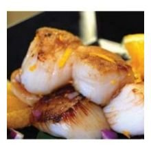 Individual-Quick-Frozen-Water-Added-Wild-Sea-Scallop
