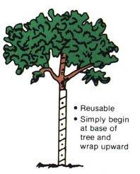 Vinyl Tree Guard