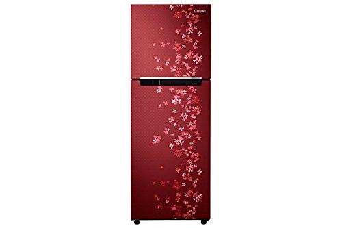 Samsung-RT27JARZERY-253-Litres-4S-Double-Door-Refrigerator-(Sanganeri)