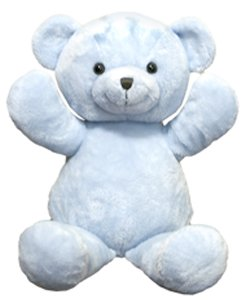 31S2HHFHHeL Cheap Price 14 Personalizable Blue Bear Stuffed Animal