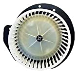 TYC 700146 Ford Replacement Blower Assembly