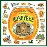 The Life and Times of the Honeybee ~ Charles Micucci