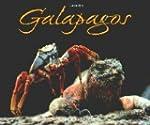 Galapagos: Inseln aus Feuer geboren