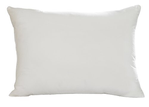 Aller-Ease Hot Water Washable Allergy Pillow, King, Medium by Aller-Ease (Aller Ease Hot Water Pillow compare prices)