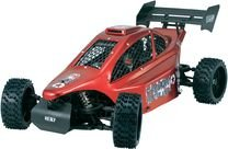 Reely 1.6Petrol large model Buggy Carbon Fighter all-wheel 4WD CF-6B RtR 40 MHz FM