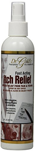 SynergyLabs Dr. Gold's Itch Relief; 8 fl. oz.