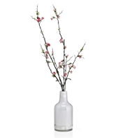 Artificial Winter Cherry Blossom in Vase