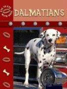 Dalmatians (Eye to Eye with Dogs II)