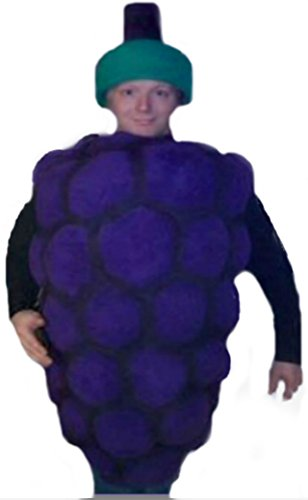 Mascots USA by CJs Huggables Custom Professional Low Cost Grapes Mascot Costume