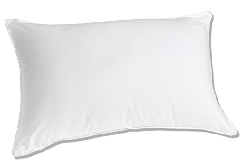 Luxuredown White Goose Down Pillow, Medium Firm - Standard Size (Down Pillow Side Sleeper compare prices)