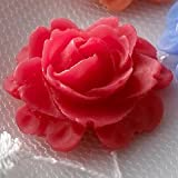 IMAGE OF Roses In Bloom Whimsies Non-Adhesive Embellishment .75