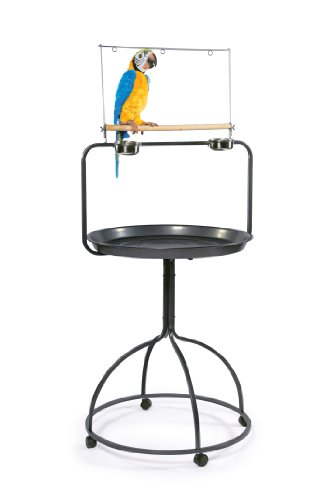Cheap Prevue Hendryx 3183 Parrot Playstand, Round (B00381D8E8)