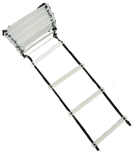 Buy TAP Extreme Duty Ladder, 30 Feet