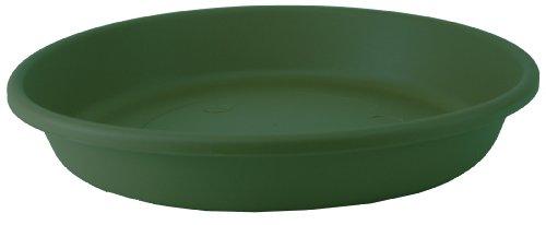 akro-mils-classic-saucer-dark-green-10-inch-pack-of-12-12410dg