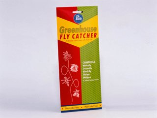 Bayer Green House Fly Catcher 7 Panel