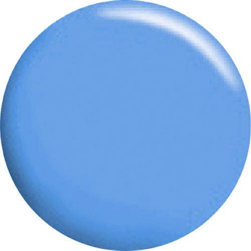 カルジェル ブルー 4g CGBL01S 正規代理店品