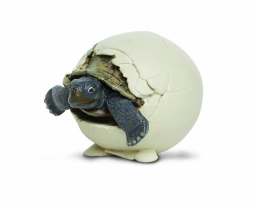 Safari Ltd  Incredible Creatures Tortoise Hatchling Figure - 1