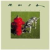 Rush - Signals - Mercury - 6337 243