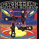 The Psychedelic Guitar Circus