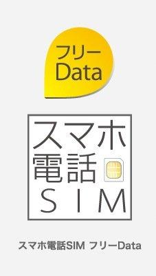日本通信 bモバイル スマホ電話SIM フリーData 標準SIM [GM-SDL-FD]