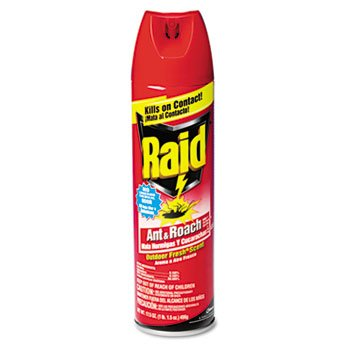 Raid Outdoor Fresh Scent front-889779