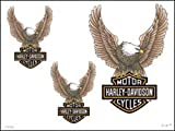 Harley Davidson Motor Cycles Temporary Tattoos - Eagles 3 Tattoos