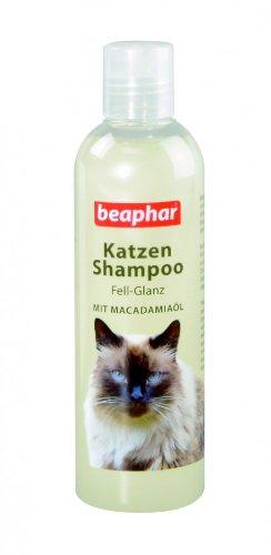 Katzen-Shampoo