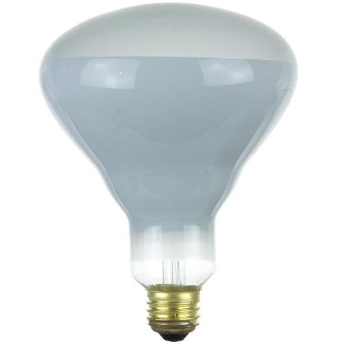 Sunlite 100BR40/HAL/FL 100-Watt Halogen BR40 Reflector Bulb, Clear