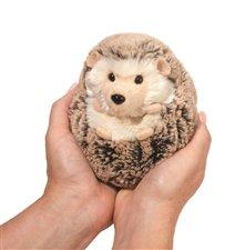 Spunky Hedgehog