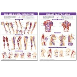 Trigger Point Chart Set: Torso & Extremities 2nd Edition