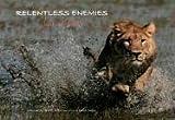 Relentless Enemies: Lions and Buffalo Dereck Joubert