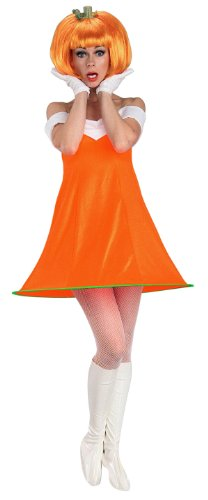 Pumpkin Spice Adult Costume - Womens Std.