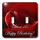 Edmond Hogge Jr Insects Ladybug Love Sweet 16 Birthday Light Switch Covers double toggle switch