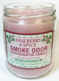 Odor Exterminator Candle Mulberry and Spice 13oz