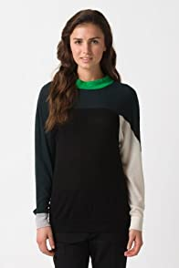 Fashion Show Long Sleeve Color Block Crewneck Sweater