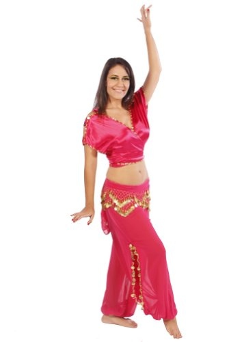 Belly Dance Top, Harem Pants & Hip Scarf Costume Set | Shining Showcase