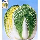 金閣75[白菜]【タネ】20ml