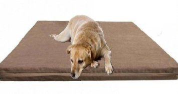 Dog Bed: 42SP Luxury Big Jumbo 50
