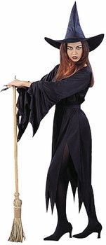 Adult Women's Classic Witch Halloween Costume (Size: Standard 8-12)
