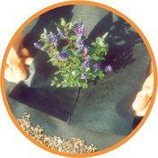 nutleys-10-x-2-m-weedban-50-weed-control-fabric-black