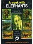 A Week with Elephants: Proceedings of...