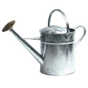 Strong 10 litre Galvanised Watering Can for Long Life