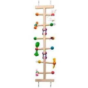 Kaytee Avian Forage-N-Play Ladder, Medium